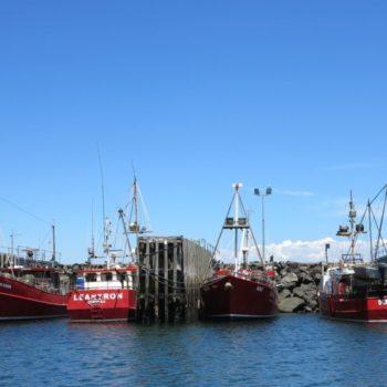 hurseyfleet