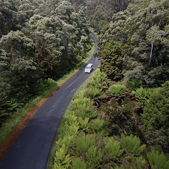 Tarkine Drive